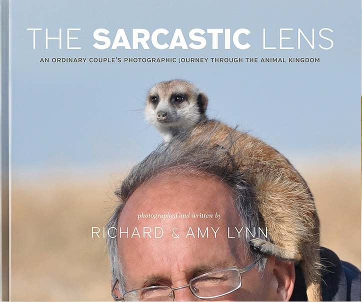 The Sarcastic Lens: An Ordinary Couple's Photographic Journey through the Animal Kingdom